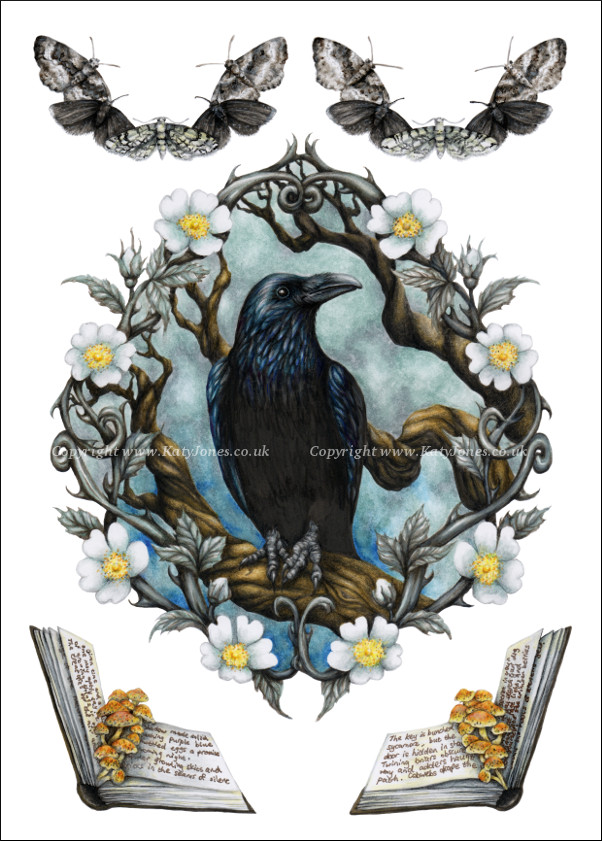 Decorative raven image with wild roses, moths and magical tomes